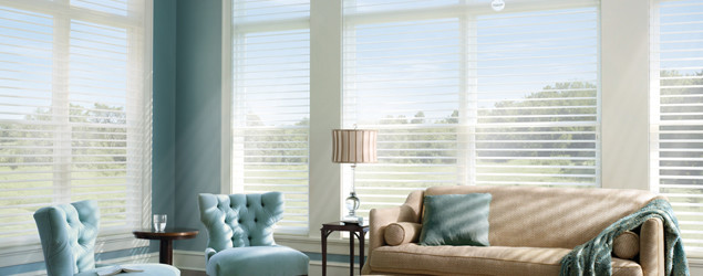 Window Treatment Choices for Light and Privacy