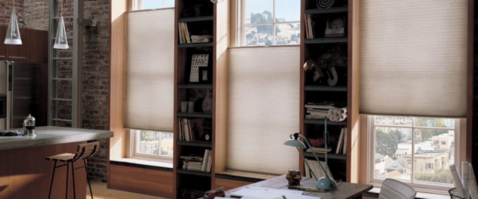 Shutter Guy Blinds Shades Window Treatments