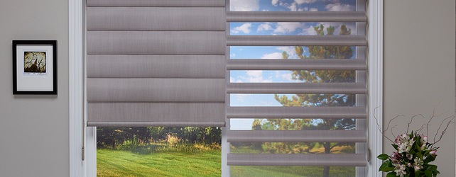 Pirouette Window Shadings By Hunter Douglas